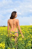 Girl nudists Larisa walking on a blooming meadow - naturism photo pic006